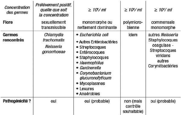 leucocytes urinaires élevés sans infection